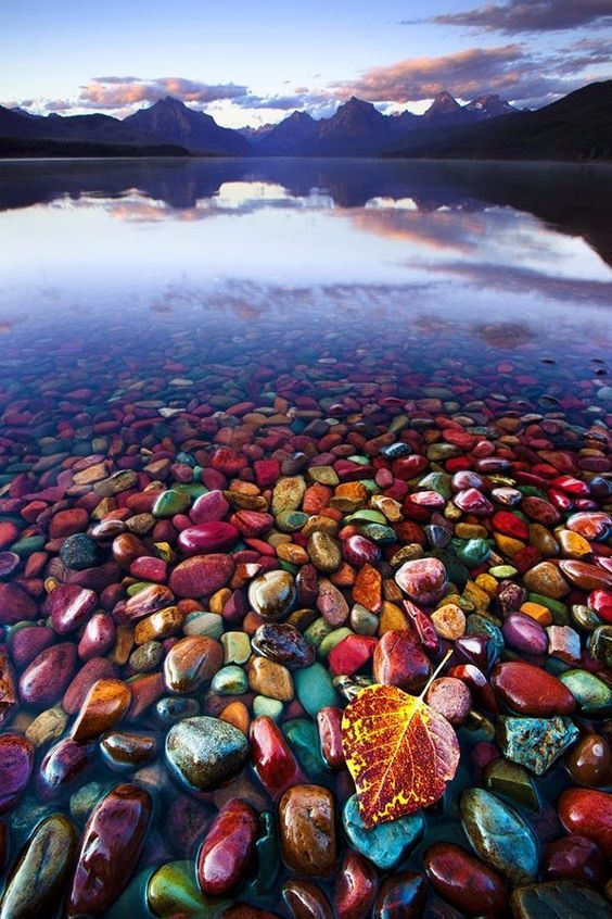Bucket List ALERT!!! MUST go to Pebble Shore Lake in Glacier National Park,  my goodness, that's gorgeous!!!