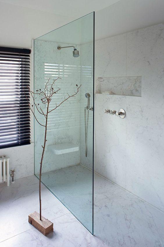 ceiling rose, shower rail, seat, niche, single panel glass