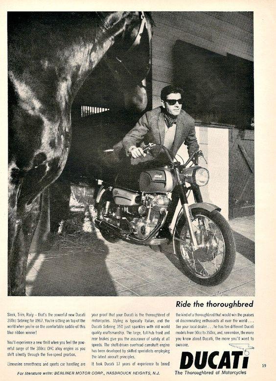 DUCATI 350 Sebring Motorcycle Horse Ad