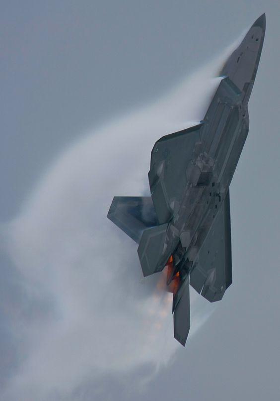 F-22 Raptor 8