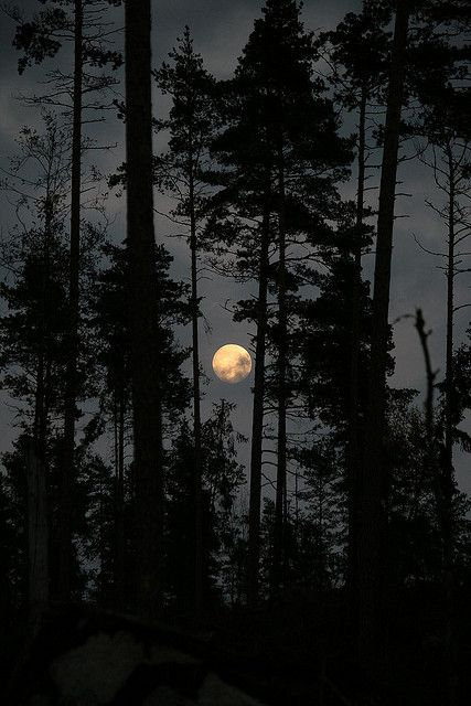 Full Moon in the skies of Sweden.