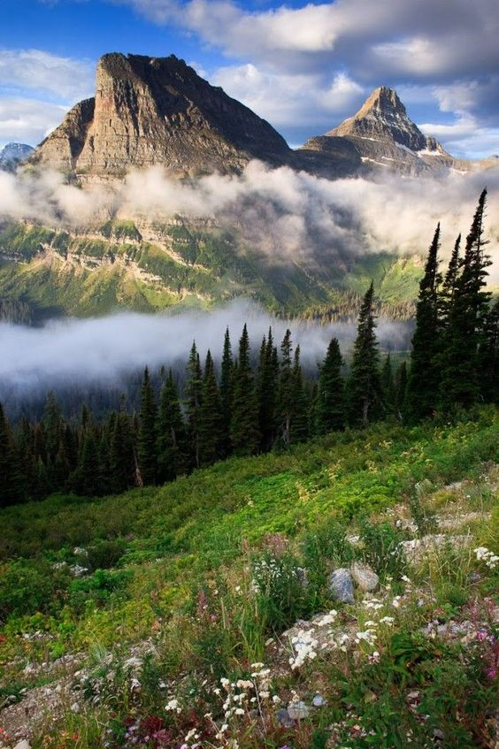 Going to the Sun Highway, Glacier National Park. Montana.