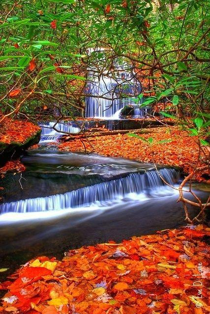 Grogan Creek Waterfalls, North Carolina, USA