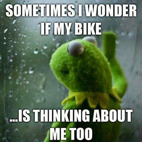 I know she  #Bikerlife #bikerhumor #ChopperExchange