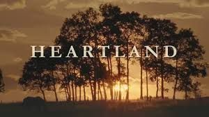 Image result for heartland horses