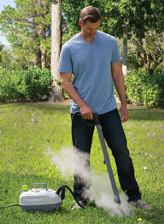 Kill weeds the natural way without harmful chemicals or backbreaking labor with the weed killing steamer.