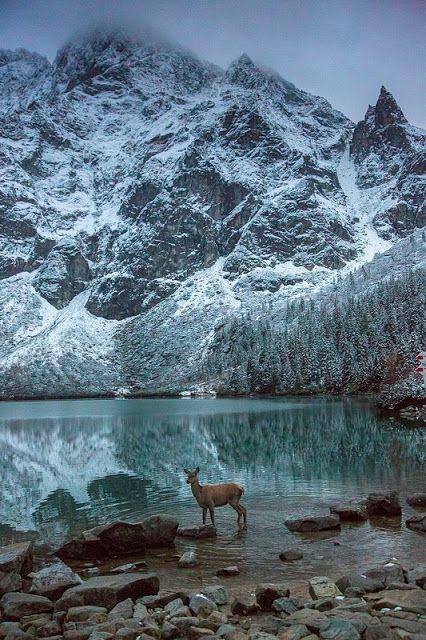 Morskie Oko Lake // Mnich Mountain // Tatras // Poland