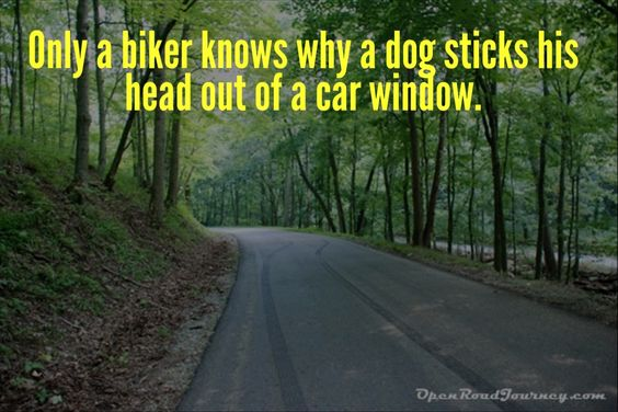 Motorcycle quote we love: