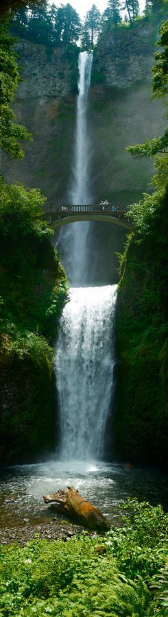 **Multnomah Falls, Oregon, USA
