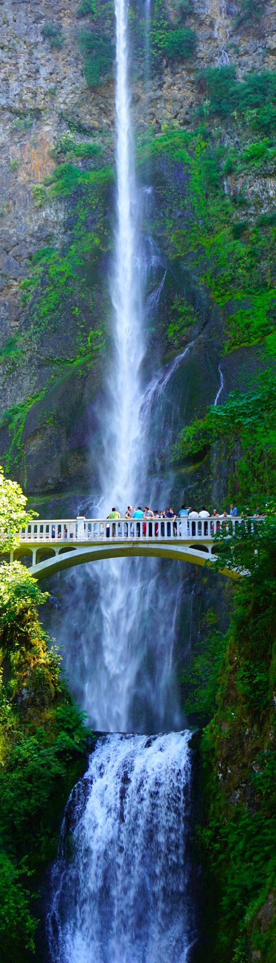 Multnomah  of the beautiful sites close to Portland, OR. Zach and I fell in love with it the first time we saw it 49 years ago.