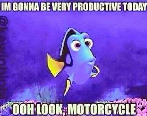 My thought everytime I got into my garage! #motorcycle #bikerhumor #bikerlife #findingnemo #dory #ChopperExchange