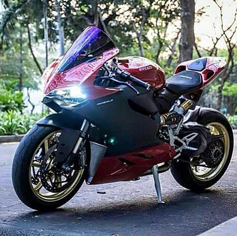Piece of art Via ? | DUCATI PANIGALE | FOLLOW FOR BIKE PICS. Use #@twowheelssoul or DM for a S/O #bmw #aprilia #kawasaki #yamaha #suzuki #ducati #ktm #honda #triumph #mvaugusta #s1000rr #hp4 #ninja #zx6r #zx10r #675 #f3 #f4 #r1 #r6 #rsv4 #panigale #superleggera #899 #1199 #1299 #848 #cbr #rr #rc8 by twowheelssoul