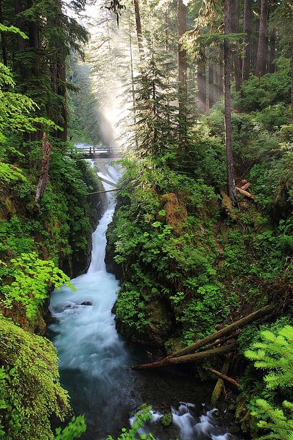 Sol Duc Waterfall, Olympic National Park, Washington, USA