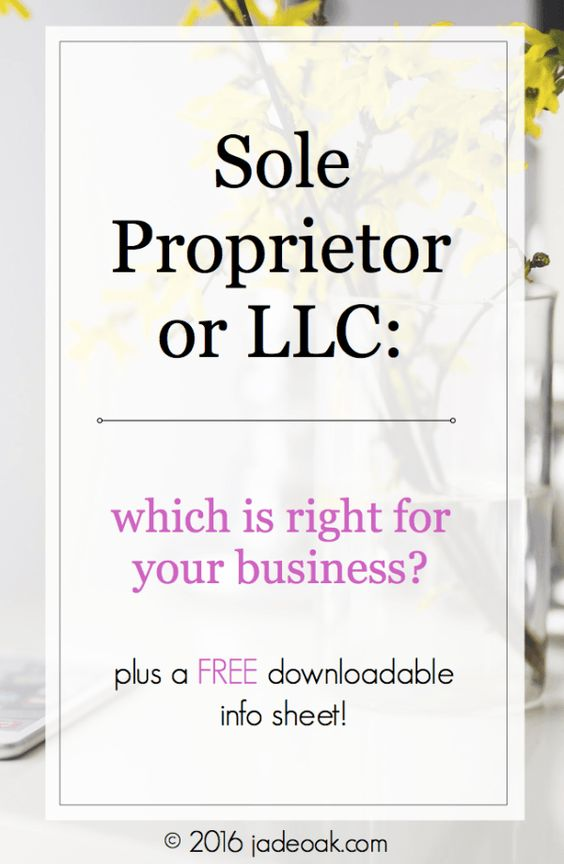 Sole Proprietor or LLC: Which is Right for Your Business? Learn all about both business types and the pro's and con's of each. Perfect for bloggers and small biz owners (written by an attorney / blogger) - includes a downloadable info sheet!!