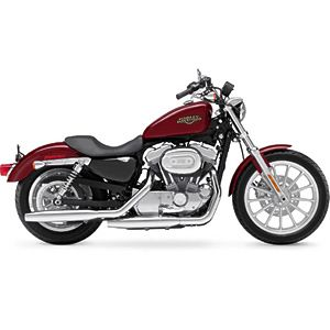 Starter Bikes: Harley Davidson Sportster 883 Low