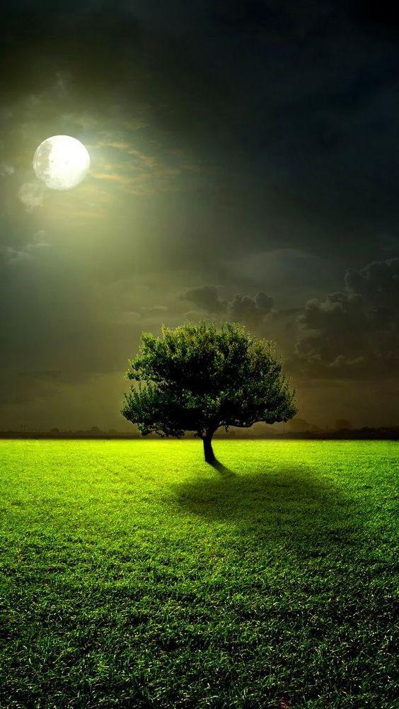The 7 Most Inspiring Natural Sceneries - 99TravelTips99TravelTips