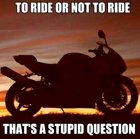 To ride or not to ride, stupid question, motorcycle, sporbike, rider, quotes