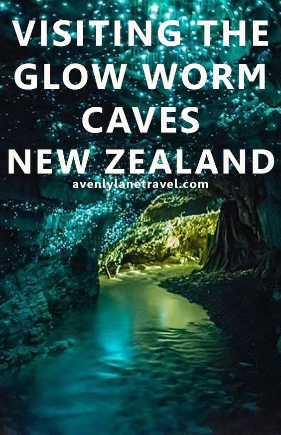 Visiting The Glow Worm Caves In New Zealand - Avenly Lane Travel