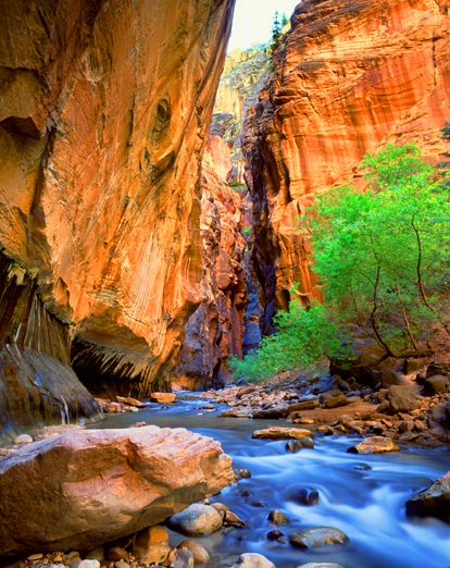 Zions Narrows,  10 best hikes in the world