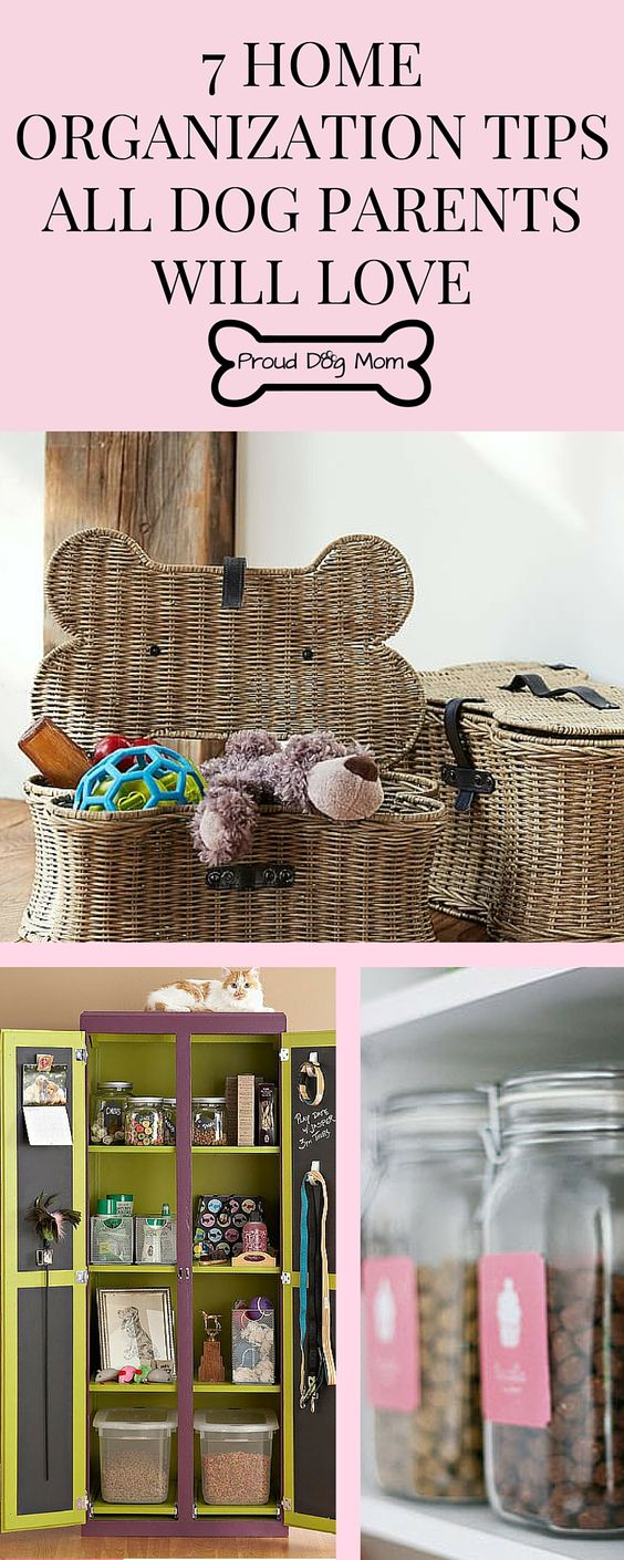 7 Home Organization Tips All Dog Parents Will Love | Organization Hacks | Dog |