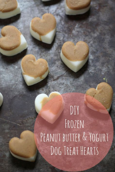A simple  recipe for no-bake frozen peanut butter and yogurt dog treats that your dog will find delectable, particularly in the heat of summer. ;)