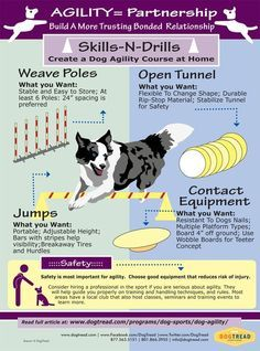 AGILITY= Partnership - Build A More Trusting Bonded Relationship with Your Dog #Agility #Partnership #dogs #pets #ShermanFinancialGroup