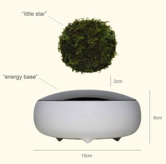 Air Bonsai is a new floating bonsai-style plant that's both techy and zen