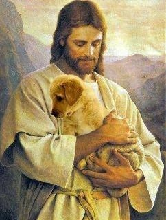♥ All Dogs Go To  favorite of all♥♥♥