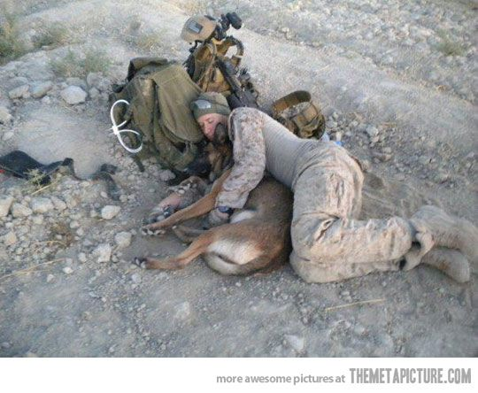 ...and you want to complain about an uncomfortable  REALLY? Thank you troops! ❤️