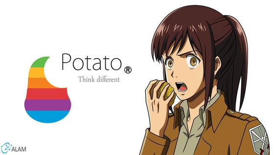 attack on titan wallpapers | potato girl - Attack on Titan Wallpaper