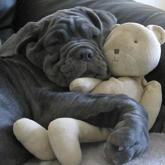 Awww a good nght sleep!!