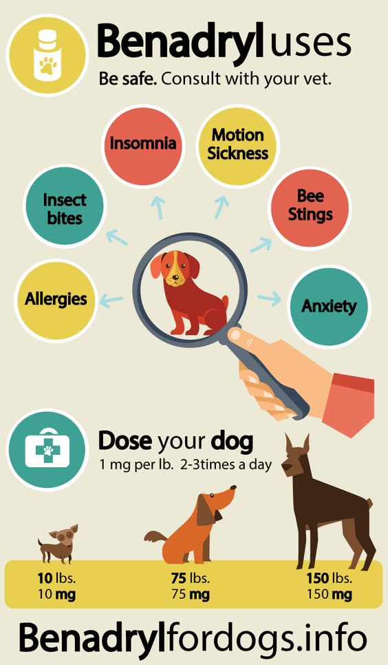 Benadryl Uses and dosage for Dogs