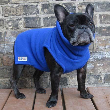 Boys Turtleneck - Royal Blue - French Bulldog Pug Fleece Sweater – Babies & Beasts