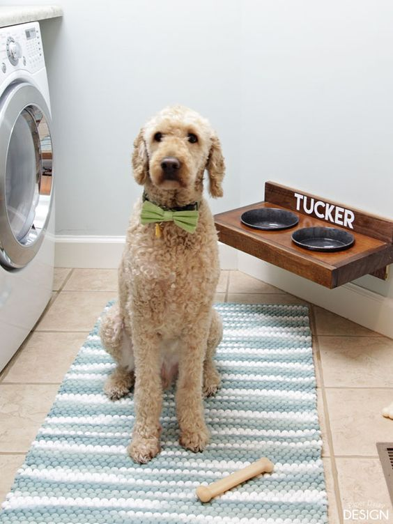 Does it feel like Dog Days of Summer to you yet? It's heating up quickly here! But thanks to our new wall mounted pet feeding station our sweet boy Tucker can get a cooling drink of water in style. I had long been frustrated with the raised dog feeder we had previously. It was ugly, it …