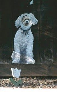 Dog Fence Peep Hole: silly, but amusing to passersby. -LRE
