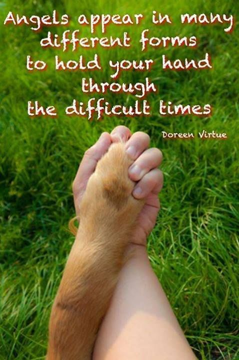 #Dogs know so much about love! ❤️❤️