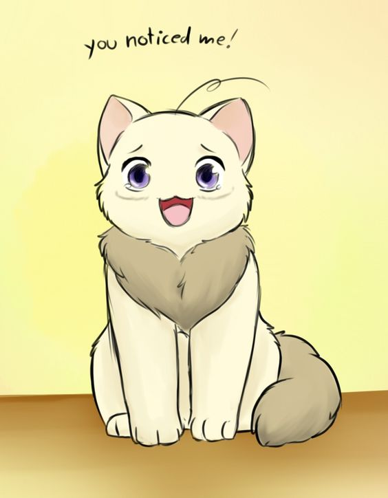 hetalia canada cat - Google Search