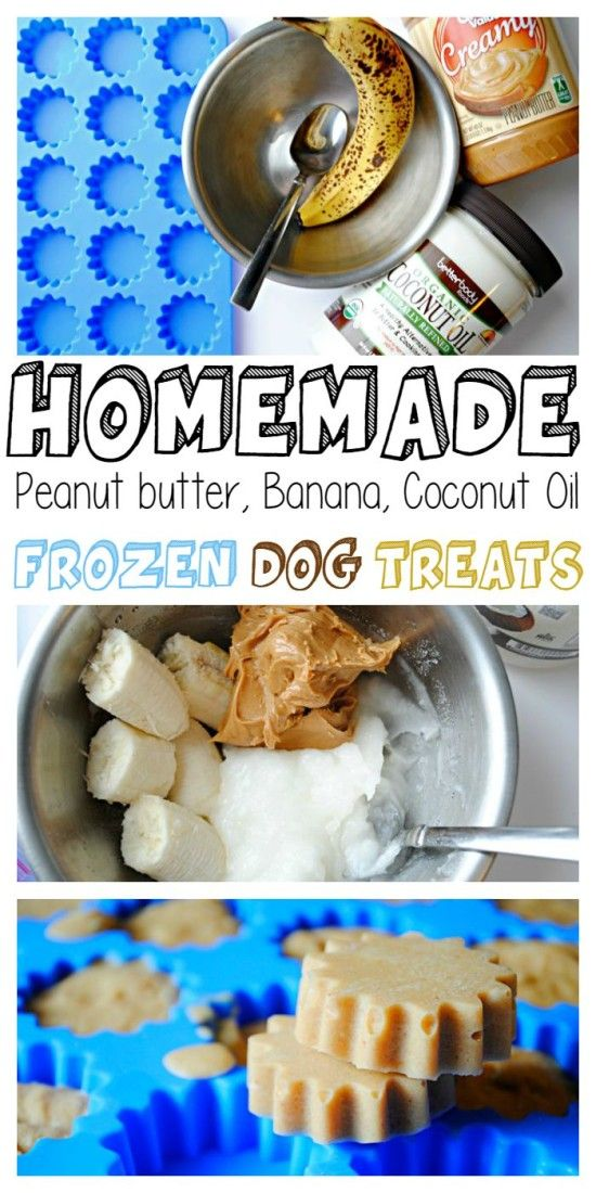 Homemade Frozen Peanut Butter, Banana, Coconut Oil Dog Treats