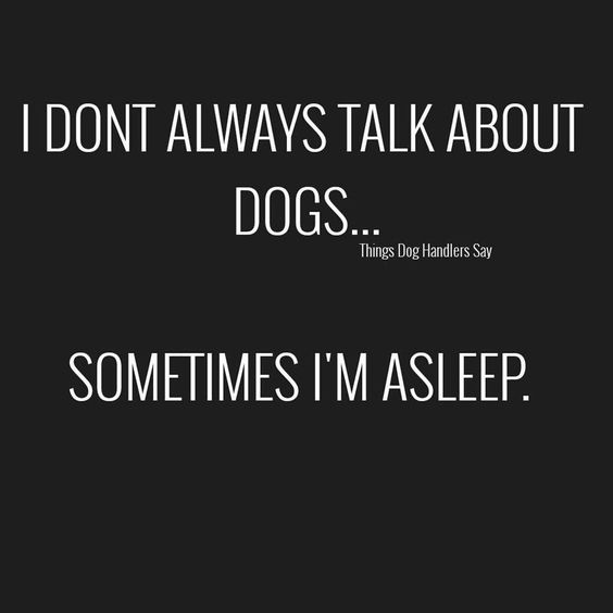 I don't always talk about