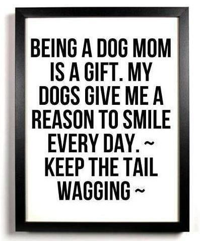 I'm a dog mom!