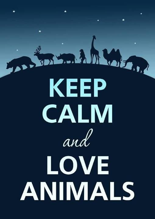 Keep calm and love  the best one i've