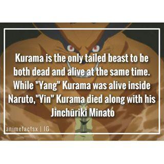 Kurama fact