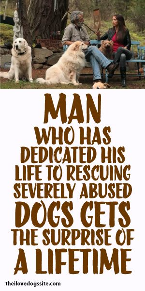 Man Who Has Dedicated His Life To Rescuing Severely Abused Dogs Get Surprise Of A Lifetime
