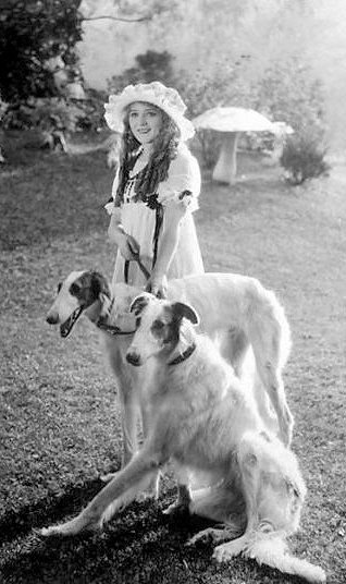 Mary Pickford with two Borzois - c. 1915