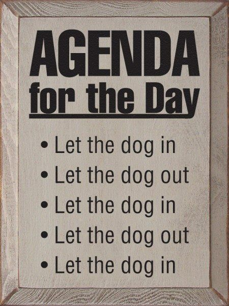 .Mike's daily routine!