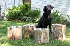 NEED THIS ASAP!! Log Dog Feeders (Raised). $, via Etsy.