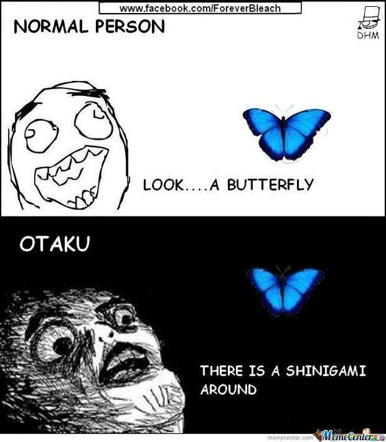 Otakus Vision (funny)