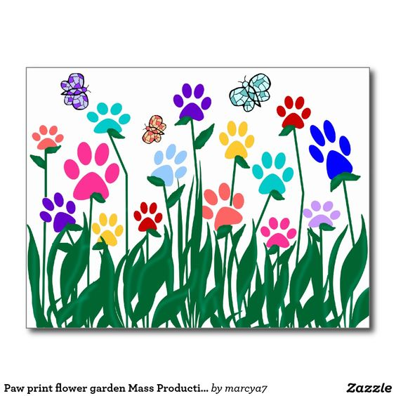 Paw print flower garden Mass Production Postcard