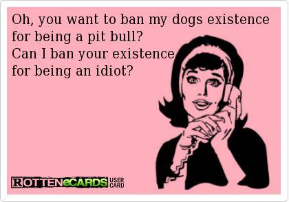 Rottweiler instead of pitbull