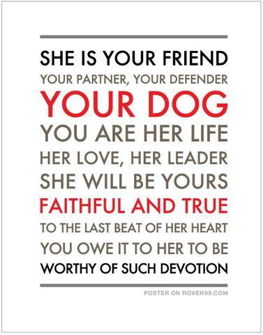 Rover 99 - *She Is Your Friend - light | Poster